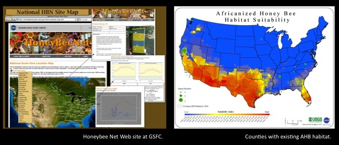 map of africanized bees in us ahb20incident20occurance new save obesity continues steady northward spread like africanized honey